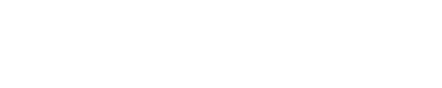 The Hole Deal logo